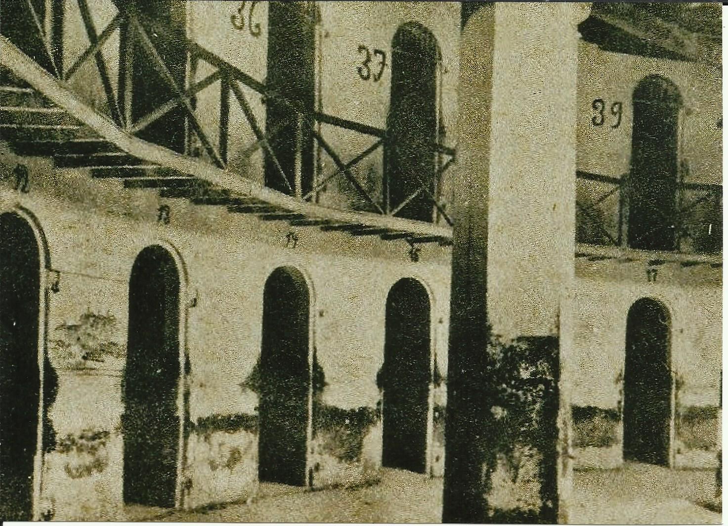 RAFAEL ARÉVALO GONZÁLEZ: CONSTANCIA, SACRIFICIO Y ESPERANZA (3)